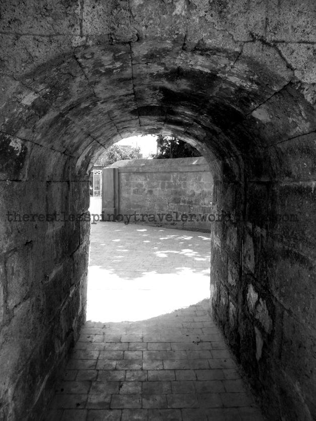 Through the park's walls